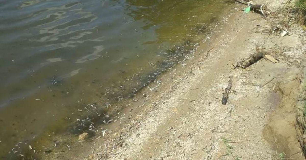 @ Facebook\Миколаївський рибоохоронний патруль