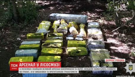 На Дніпропетровщині у лісосмузі знайшли арсенал зброї та боєприпасів