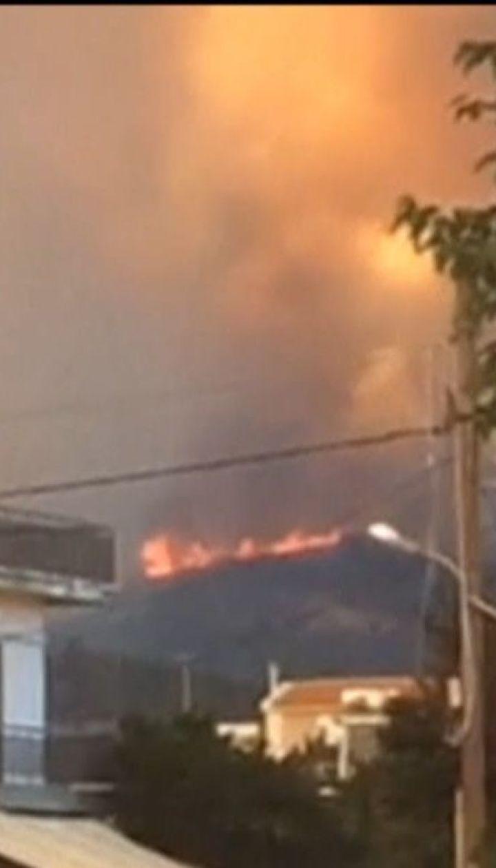 На греческом острове Эвбея вспыхнули лесные пожары