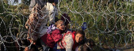 В МВД бьют тревогу из-за критического уровня мигрантов-нелегалов в Украине, угрожающего нацбезопасности
