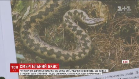 Від укусу змії у Львові померла 4-річна дівчинка
