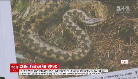 От укуса змеи во Львове умерла 4-летняя девочка