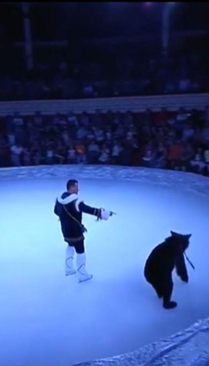 Зоозащитники хотят конфисковать животных из одесского цирка из-за жестокого обращения