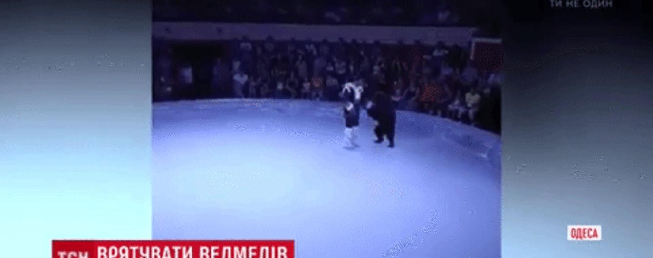 Медведица вышла из-под контроля: скандальный инцидент в Одесском цирке возмутил зоозащитников