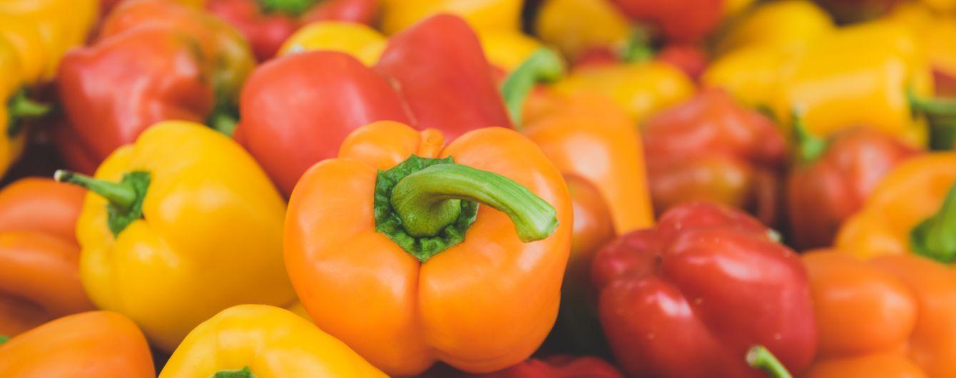 Крутые перцы: на Херсонщине вырастили самое большое поле сладкого перца в Украине