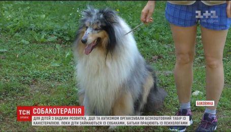 В Україні відкрили табір для дітей з вадами розвитку, ДЦП та аутизмом із залученням собак
