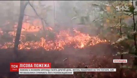 На Херсонщині другий день гасять пожежу у лісовому урочищі