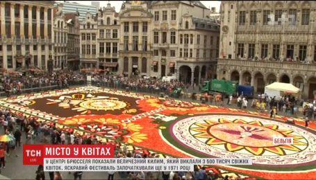 В центре Брюсселя создали гигантский ковер из свежих цветов