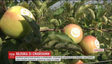 В Винницкой области стали выращивать яблоки со смайликами
