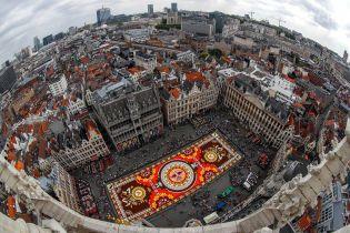 В центре Брюсселя выложили гигантский ковер из полумиллиона цветов