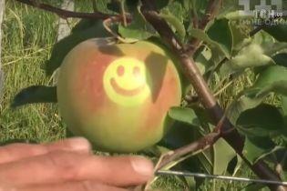 На Виннитчине вырастили яблоки со смайликами