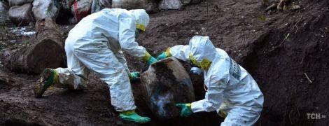 """Рекордна партія наркотиків. У Мексиці з підземних схованок розкопали 50 тонн """"кристалу"""""""