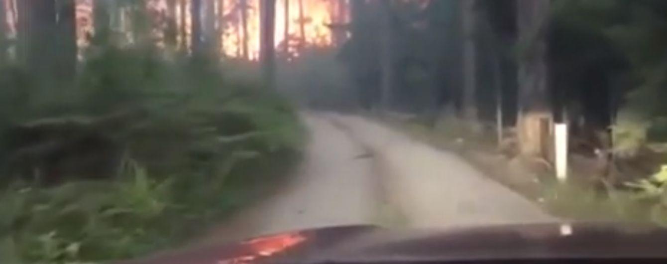 Батько з сином зняли на відео спробу врятуватися від пожежі на позашляховику