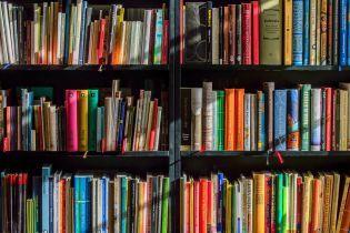 Україна виділила рекордну суму на поповнення бібліотечних фондів