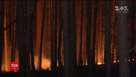 Немецкие спасатели взяли под контроль масштабные лесные пожары под Берлином