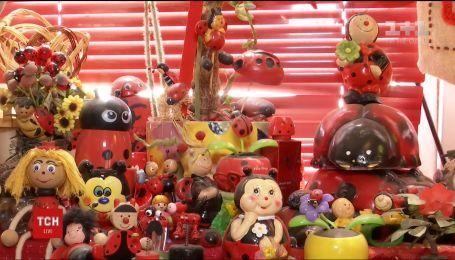 Жителька Дніпра зібрала у колекцію 11680 виробів із сонечками