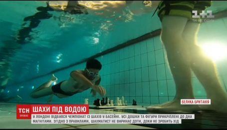 Шах и мат под водой. В Лондоне прошел чемпионат мира по шахматам в бассейне