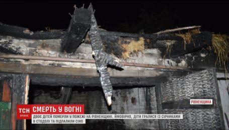 Трагедия на Ровенщине. 6-летняя девочка и ее 7-летний брат погибли в пожаре в частном подворье