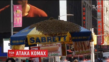 Десятки тысяч пчел напали на зонтик в центре Нью-Йорка