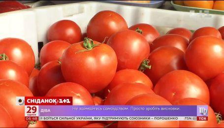 Скільки зараз коштують помідори та яким сортам віддають перевагу українці