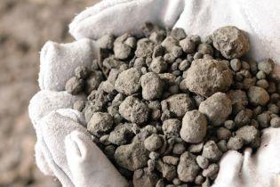 Украина ввела антидемпинговые пошлины на цемент из России, Беларуси и Молдовы