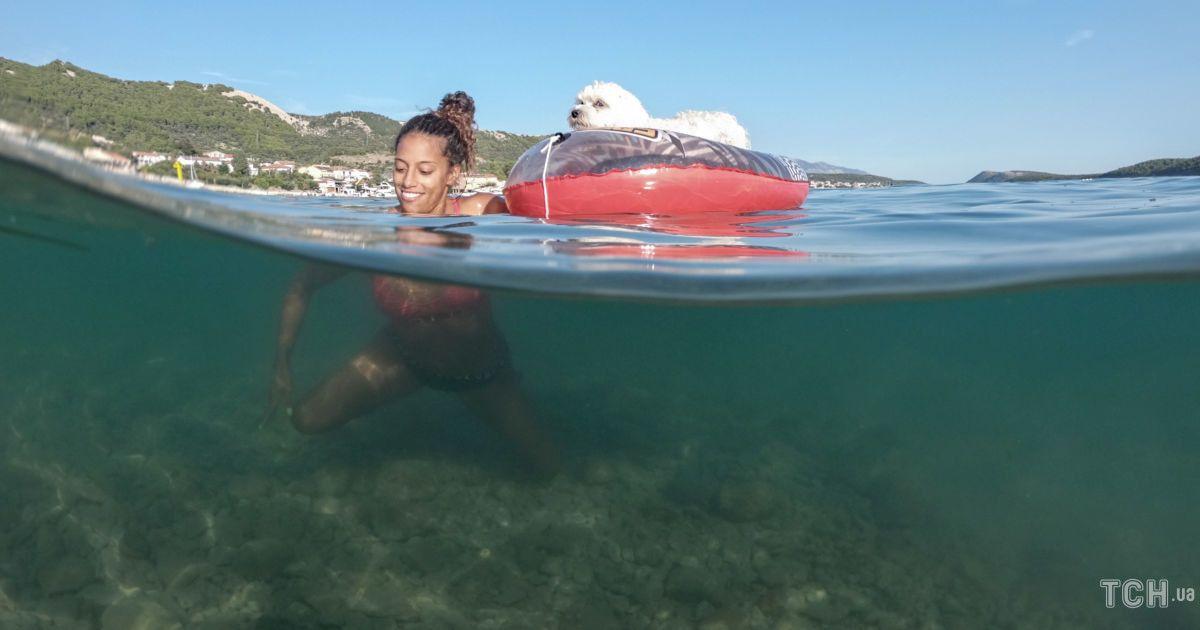 Змагання з плавання для собак та господарів у Хорватії