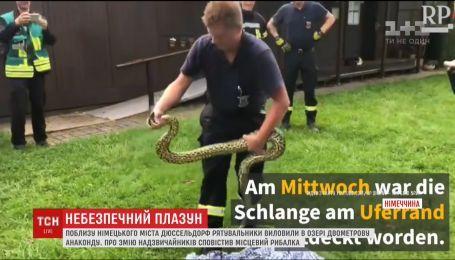Німецькі надзвичайники виловили з озера двометрову анаконду