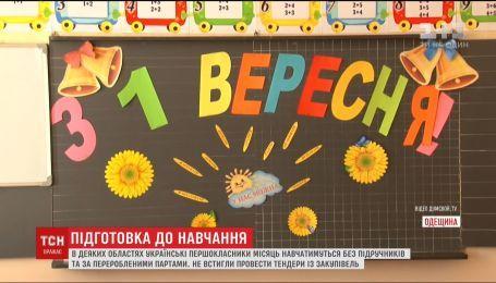 Родительский протест. В Кропивницком родители школьников пикетируют городской совет