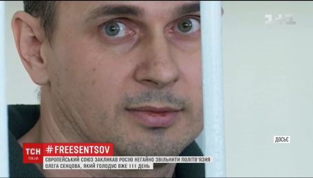 ЕС призвал Россию немедленно освободить Сенцова
