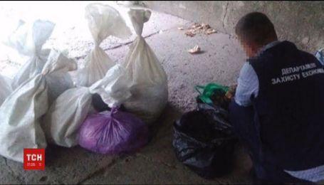 Янтаря на три миллиона гривен изъяли правоохранители в Ровенской области