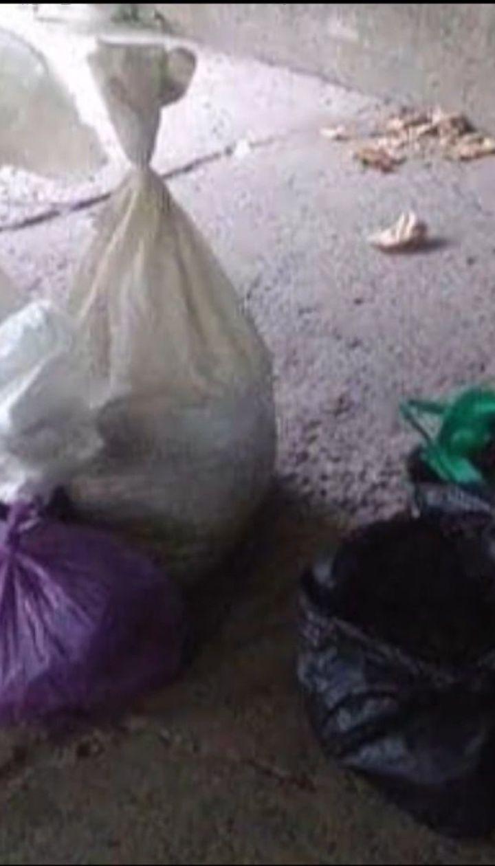 Бурштину на три мільйони гривень вилучили правоохоронці на Рівненщині
