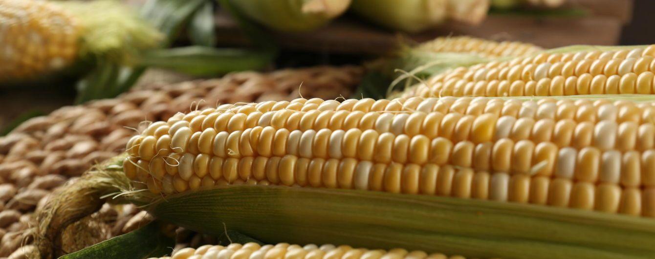Коли тренд дійсно корисний: здорове харчування в Україні