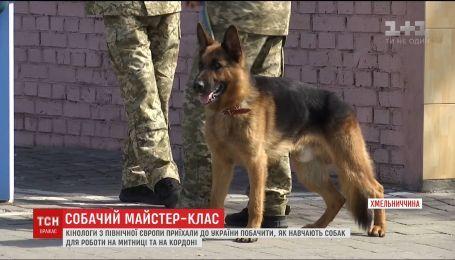 Кінологи з північної Європи приїхали до України побачити, як навчають собак для роботи на кордоні