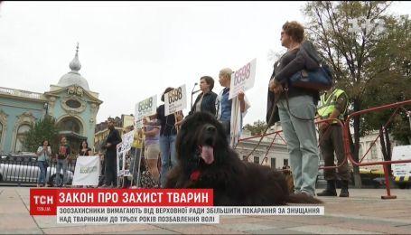 У Києві мітингарі вимагали збільшити покарання за знущання над тваринами