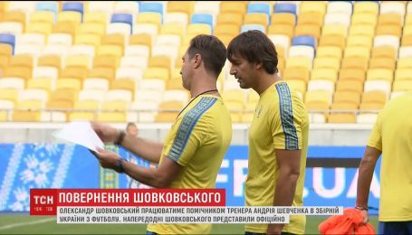 Александр Шовковский стал помощником тренера сборной Украины по футболу