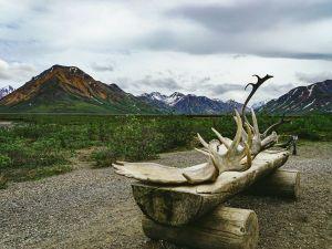 5 причин вирушити на Аляску