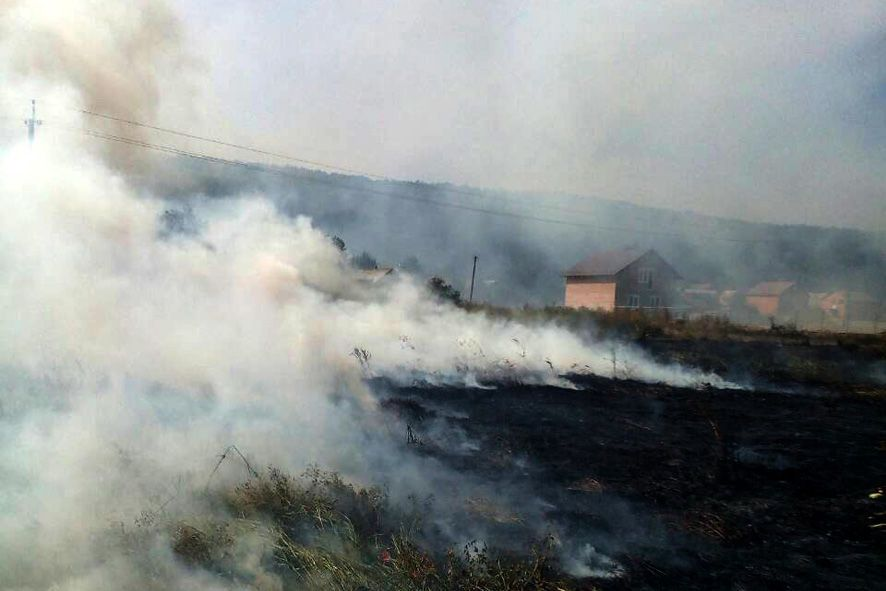 Торфовища пожежа Полтавська