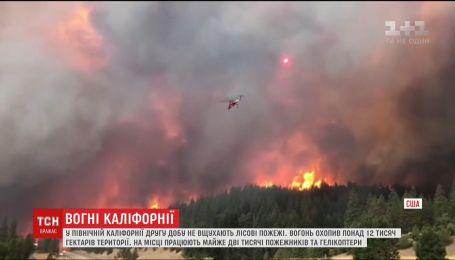 В Северной Калифорнии лесной пожар охватил 12,5 тысяч гектаров территории