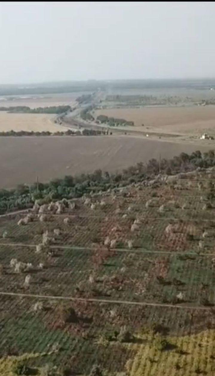 На Одещині підпалами витісняють французького винороба