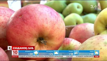 Сколько стоят яблоки и почему стоит запасаться ими уже сейчас