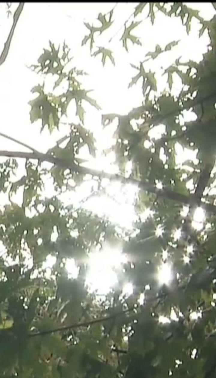 Синоптики прогнозують підвищення температури по всій Україні