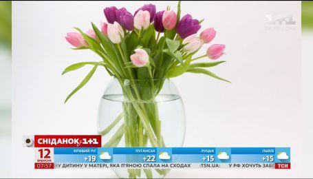 5 порад, як продовжити життя квітам у вазі