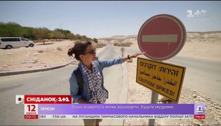 Мой путеводитель. Израиль - Райский сад посреди пустыни и борьба с нарушителями ПДД