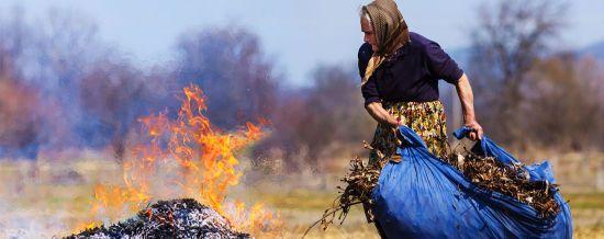 Задимлена Україна. Як волонтери допомагають Полтавщині вберегти ліси від масштабних пожеж