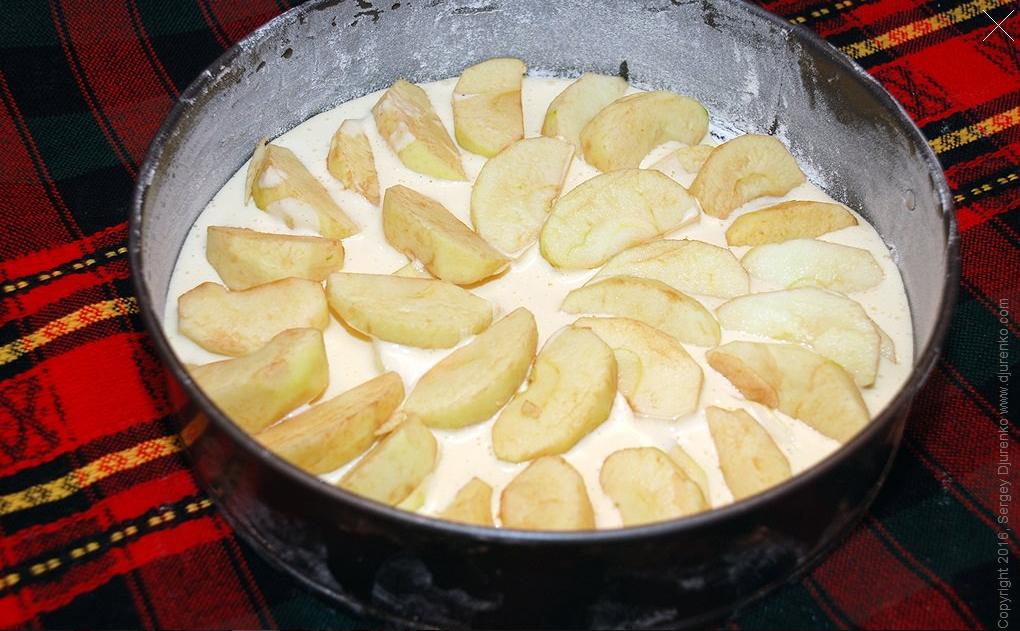 шарлотка з яблуками, для блогів_3