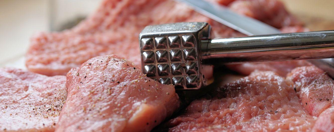 В Киеве в детских садах обнаружили гнилое мясо
