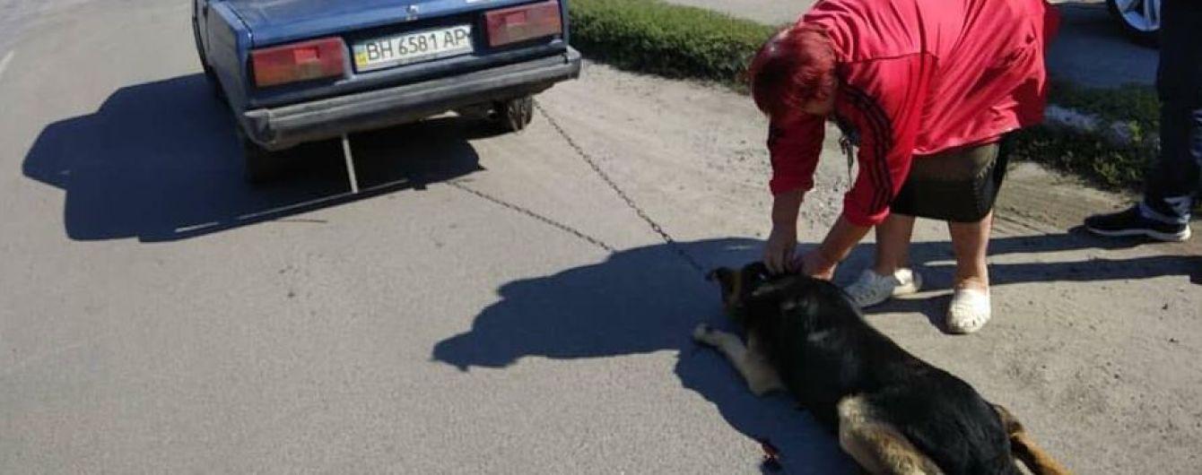Устала ухаживать. Женщина хотела избавиться от собаки, привязав цепью к бамперу