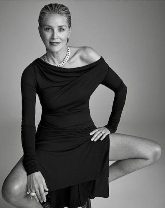 """60-річна Шерон Стоун втілила роковий образ героїні """"Основного інстинкту"""" у стильній фотосесії"""
