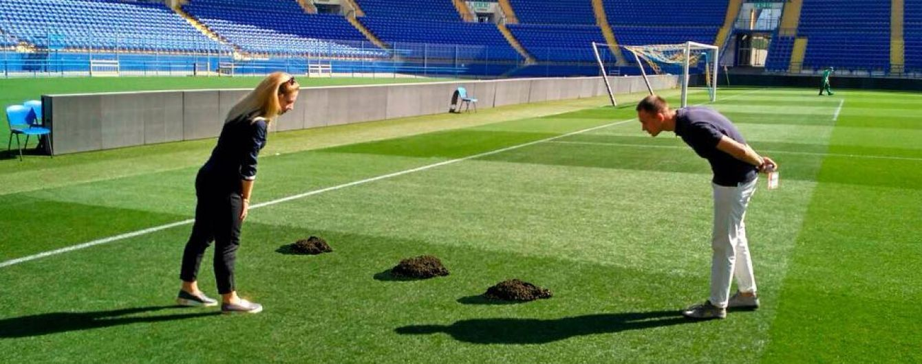 """В """"Шахтере"""" нашли крота, который испортил газон перед матчем Лиги чемпионов"""