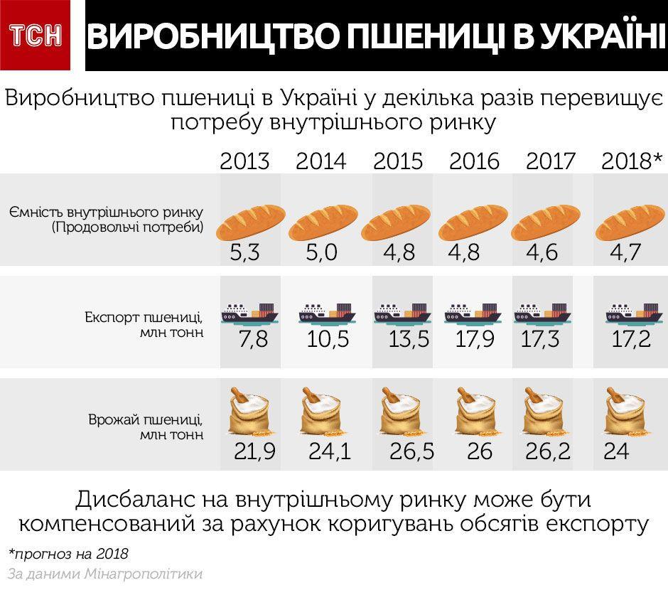 Пшениця, інфографіка